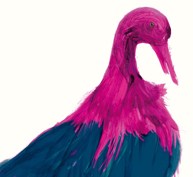 38_buntervogel
